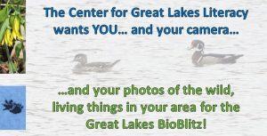 2021 Great Lakes BioBlitz banner